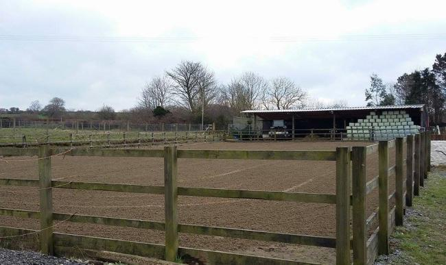 Horse Stables Available